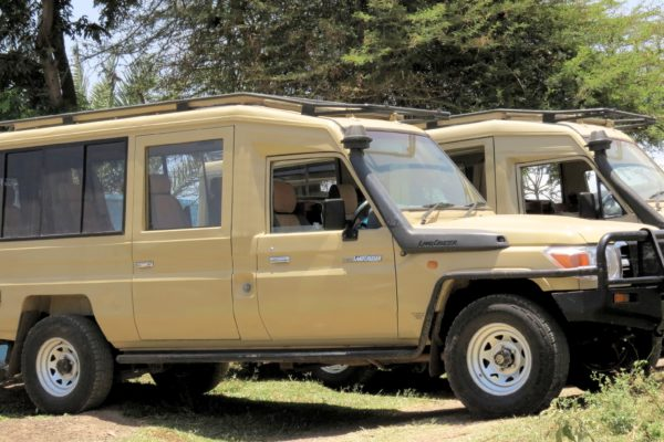 Extended Toyota Land Cruiser with pop up roof.